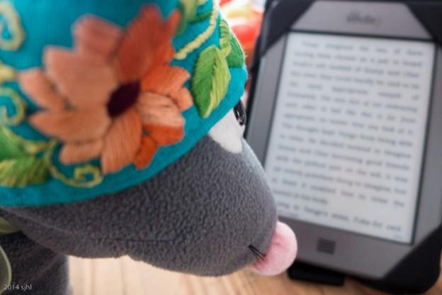 Pedrata Kindle
