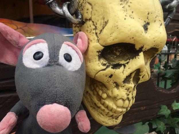 Pedrata with skull