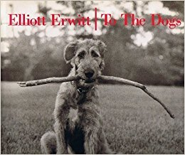 Elliott Erwitt To The Dogs