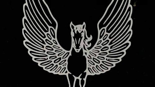 Pegasus Vanity Plate